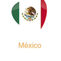 formato-banderas-Mexico